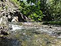 Gorbusha river.jpg