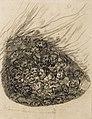 Goya - Comico Descubrimiento, 2066.jpg
