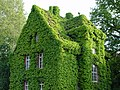 Grünes Haus Gießen.jpg