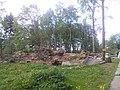 Grafenried - panoramio (10).jpg