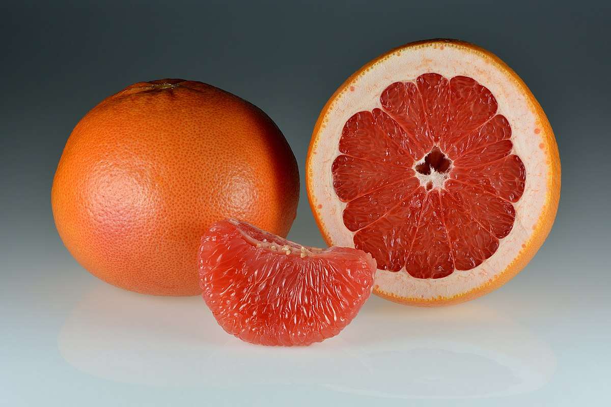 Winter hardest Orange Tree in the world-no orange smell more Seeds...