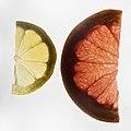Grapes and lemons close-up 2.jpg