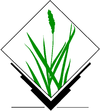 Grasslogo vector big.png