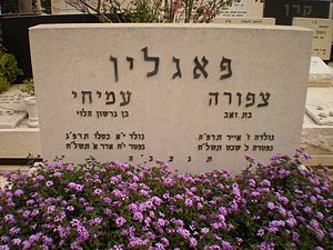 Amichai Paglin - Grave of Amichai and Tzipora Paglin