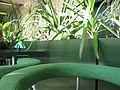 Green bar (112086102).jpg