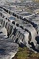 Grykes near Doolin Quay - geograph.org.uk - 1088525.jpg