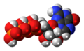 Guanosine-triphosphate-3D-spacefill.png