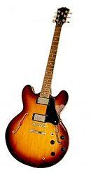 guitare electrique ou folk
