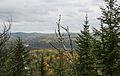 Gunflint Trail (15622445778).jpg