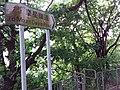 HK 香港南區 Southern District PFL Pokfulam 薄扶林道 Pok Fu Lam Road to Mount Davis Road September 2019 SSG 01.jpg