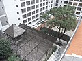 HK Mid-levels Grand Panoroma view 聖心商科學校 Sacred Heart Canossian Commercial School courtyard garden 校園 tree Oct-2010.JPG