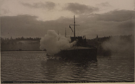 HMS Virago firing in honour of the King (HS85-10-11979)