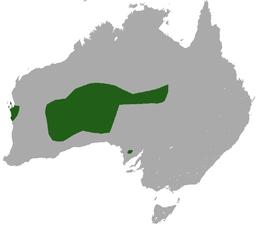 Ареал виду sminthopsis fuliginosus