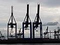 Hamburg 2009 - panoramio (19).jpg
