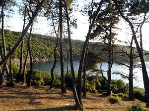 Hamsilos Bay - Hamsilos Bay in Sinop Province, Turkey