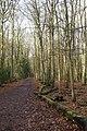 Harrocks Wood Footpath - geograph.org.uk - 1763493.jpg