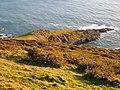 Headland below Snellings Down - geograph.org.uk - 296001.jpg