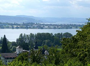 Reichenau seen from the German shore.