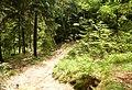 Heilige Stiege - Elbsandsteingebirge - panoramio (1).jpg