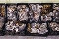 Herboristerie traditionnelle, Mindelo, Cap Vert.jpg