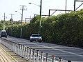 Holden Statesman (32678088522).jpg