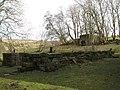 Holmslinn Lead Mine (8) - geograph.org.uk - 1800850.jpg