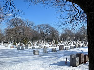 Holy Cross Cemetery, Brooklyn - Image: Holy Cross Cemetery NW snow jeh