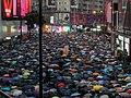 Hong Kong protests - P1055556.jpg