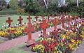 Howard Davis Park war cemetery Jersey a.jpg