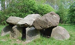 Tynaarlo - Dolmen D6 near Tynaarlo