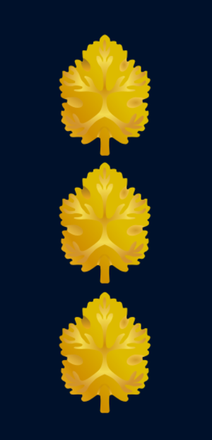 Captain (naval)