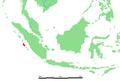 ID - Siberut.png