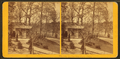 In the New Park, Phila, from Robert N. Dennis collection of stereoscopic views 3.png