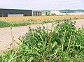 Industriegebiet Willy-Rüsch-Str.-Schmidener Weg - panoramio.jpg