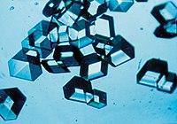 Uso de las bacterias en la tecnología y la industria Editar