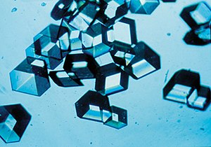 Synthetic insulin crystals synthesized using r...