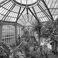 Interieur, overzicht palmenkas - 20000629 - RCE.jpg