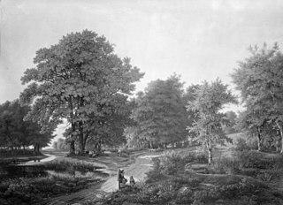 Skovparti på vejen mellem Helsingør og Hammermøllen