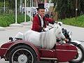 JEM2014-mini-chevaux-de-Pieric.JPG