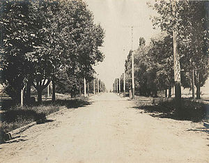 Jameson Avenue - Jameson Avenue in 1899, looking north from just south of Springhurst