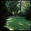 Jardim Gulbenkian, Lisboa, Portugal (3417913474).jpg