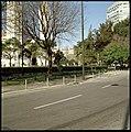 Jardim da Praça de Londres, Lisboa, Portugal (3418003048).jpg