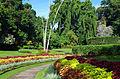 Jardin botanique de Peradeniya - vue générale.jpg
