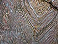 Jaspilite banded iron formation (Soudan Iron-Formation, Neoarchean, ~2.69 Ga; Stuntz Bay Road outcrop, Soudan Underground State Park, Soudan, Minnesota, USA) 21 (19037253150).jpg