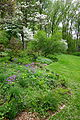 Jenkins Arboretum - DSC00683.JPG