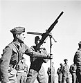 "Jewish Buffs (חיילים עברים בשירות רג'ימנט מזרח קנט, ""באפס"")-ZKlugerPhotos-00132hd-090717068512410a.jpg"