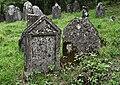Jewish cemetery Checiny IMGP7883.jpg