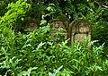Jewish cemetery Ozarow 2.jpg