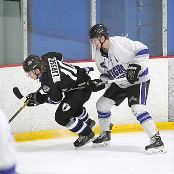 A hockey skater hooking another skater with his stick in an attempt to restrain him. Hooking is a rule infraction and may result in a minor penalty. Joel Larsson and Davis Dryden.jpg
