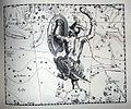 "Johannes Hevelius - Prodromus Astronomia - Volume III ""Firmamentum Sobiescianum, sive uranographia"" - Tavola QQ - Orion.jpg"